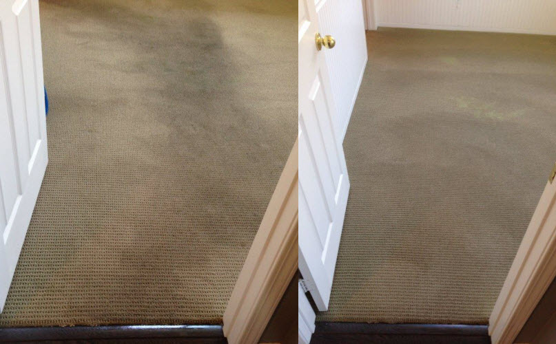 Carpet Cleaning Carmel Mountain