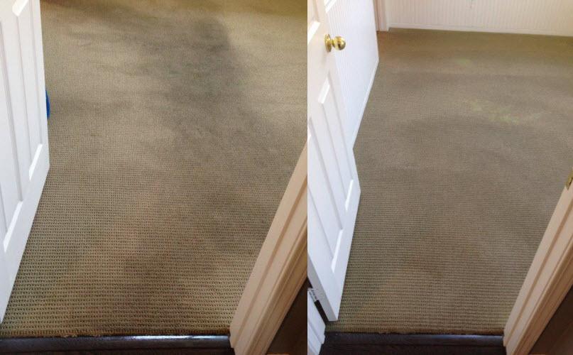 Carpet Cleaning Santa Luz